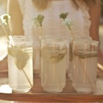 Wedding-Drink-Stirrers