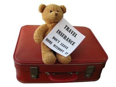 travel-insurance-teddy